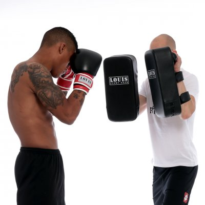 Louis Fight Gear sparkmitts basic