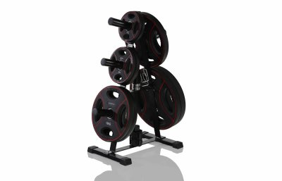 Rack for Olympic Weight Plates